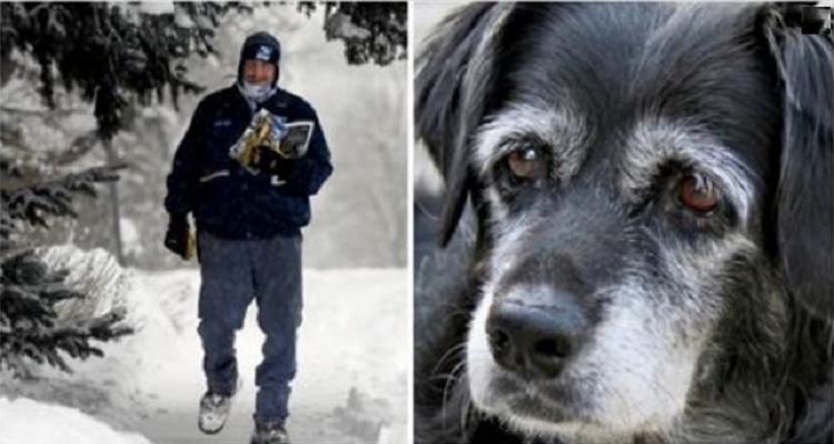 Il cane Tashi e il suo amico postino