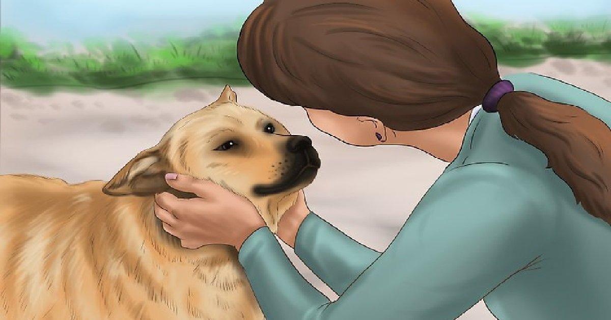 Questi segnali indicano che il tuo cane prova dolore e sta cercando di nasconderlo