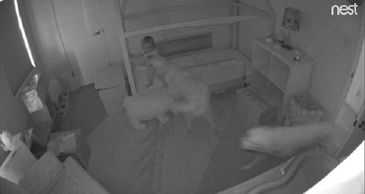 La loro bambina andava a spasso di notte e i genitori scoprono i suoi complici