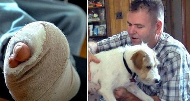 Kiko salva il suo umano rosicchiandogli un piede