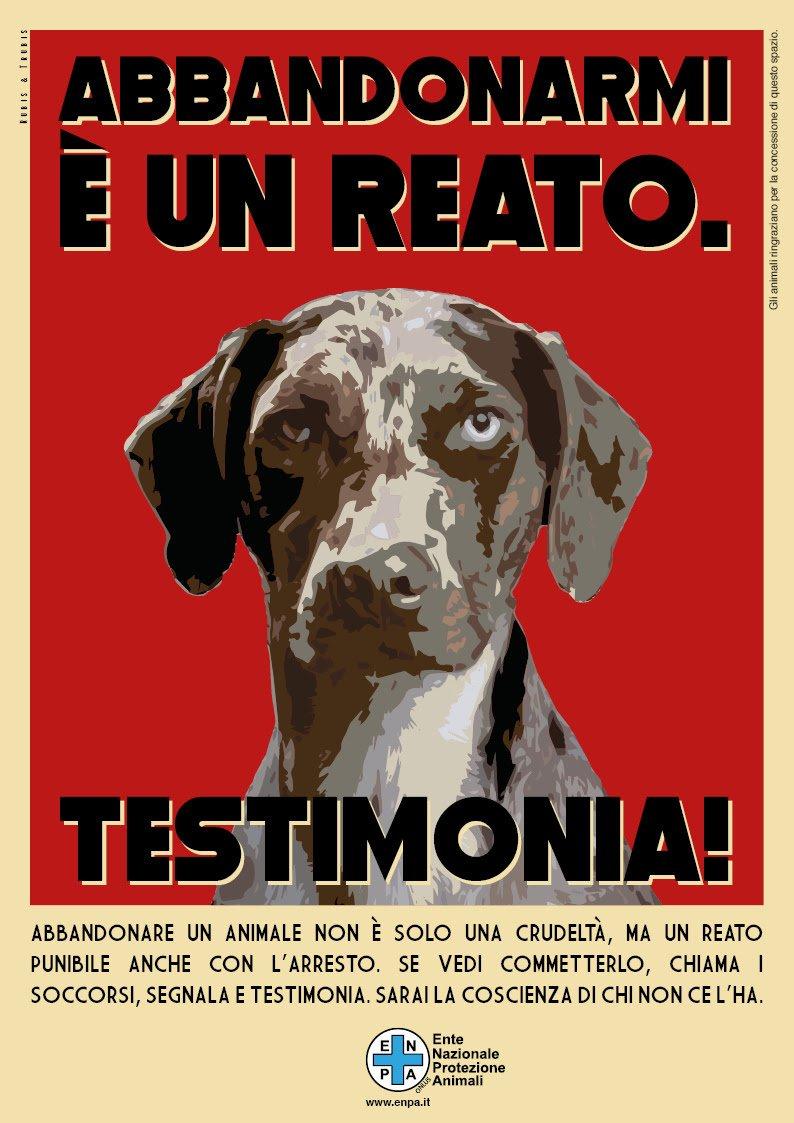 La campagna Enpa contro l'abbandono dei cani e dei gatti in estate ...