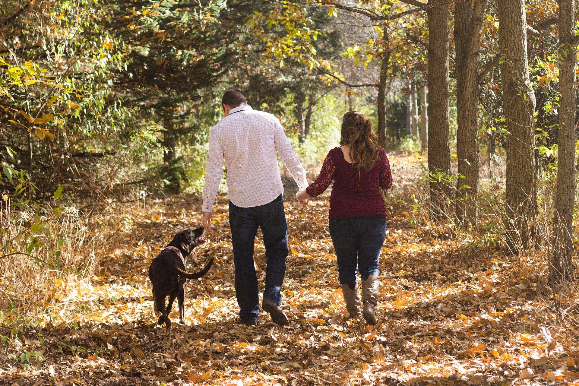 Passeggiata di famiglia con cane nel bosco