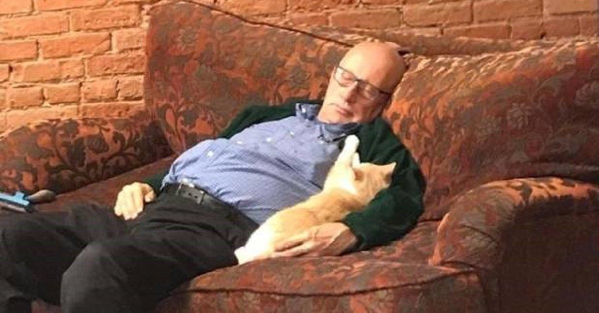 Terry-Lauerman-uomo-dorme-con-i-gatti