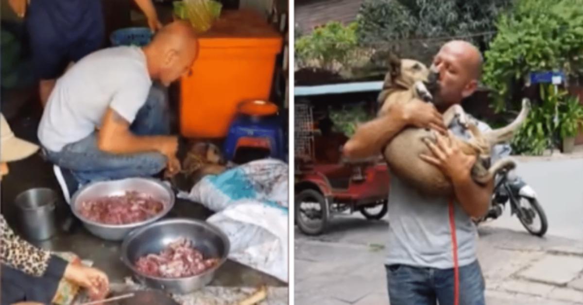 lorrore-dietro-al-mercato-della-carne-di-cane