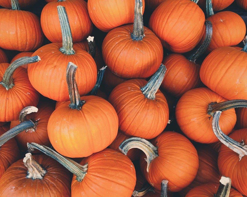 8 ricette golose con la zucca da provare quest'autunno