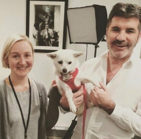 la-donazione-di-Simon-Cowell-per-la.fattoria-di-cani