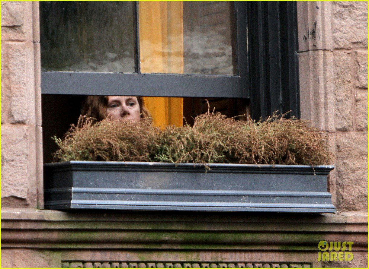 the-woman-in-the-window-prime-foto-amy-adams