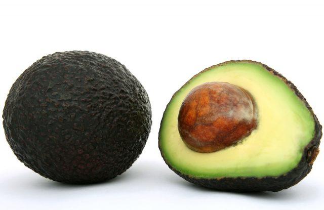 avocado-vegano