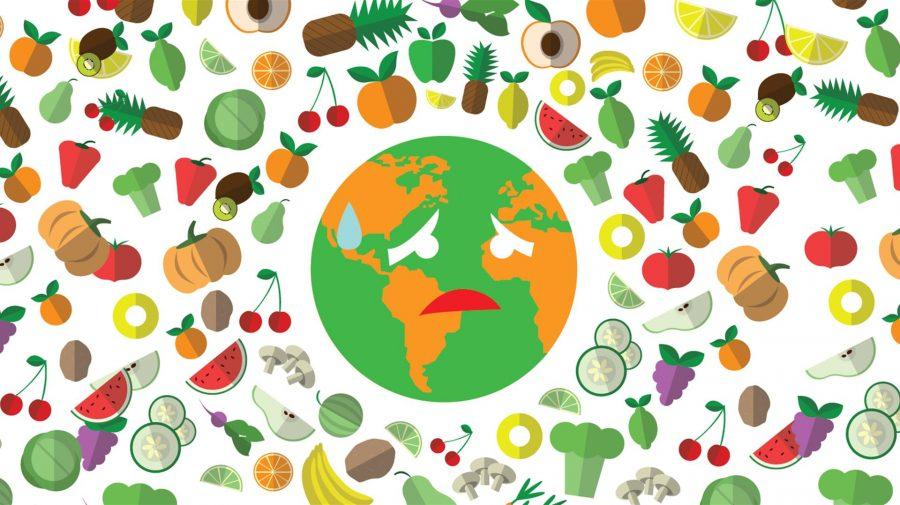 alimento per dieta senza spreco