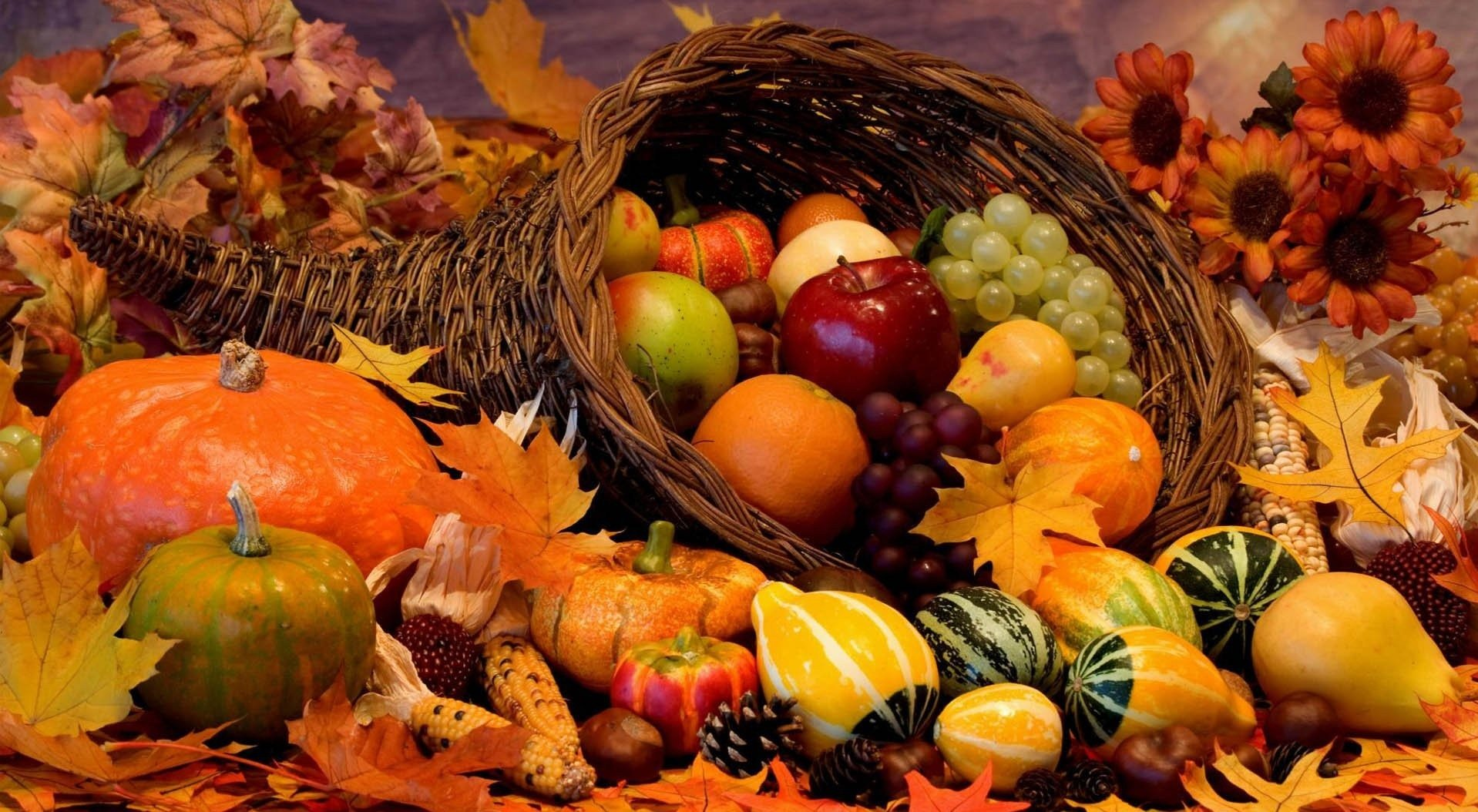 Cosa mangiare in autunno
