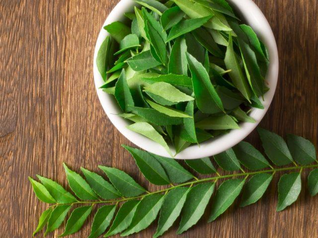 foglie-neem