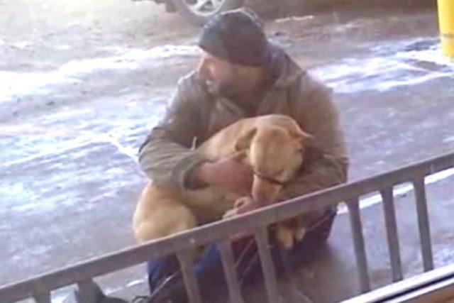 lo-sconosciuto-vede-il-cane-tremare-e-decide-di-intervenire1