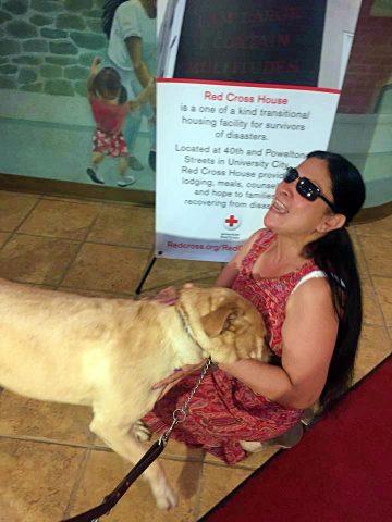 Yolanda-la-cagnolina-che-ha-salvato-la-vita-alla-sua-amica-umana
