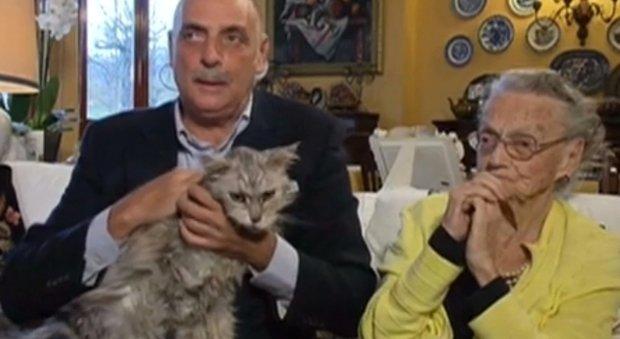Paolo Brosio sotto shock, il gatto perde sangue in diretta TV