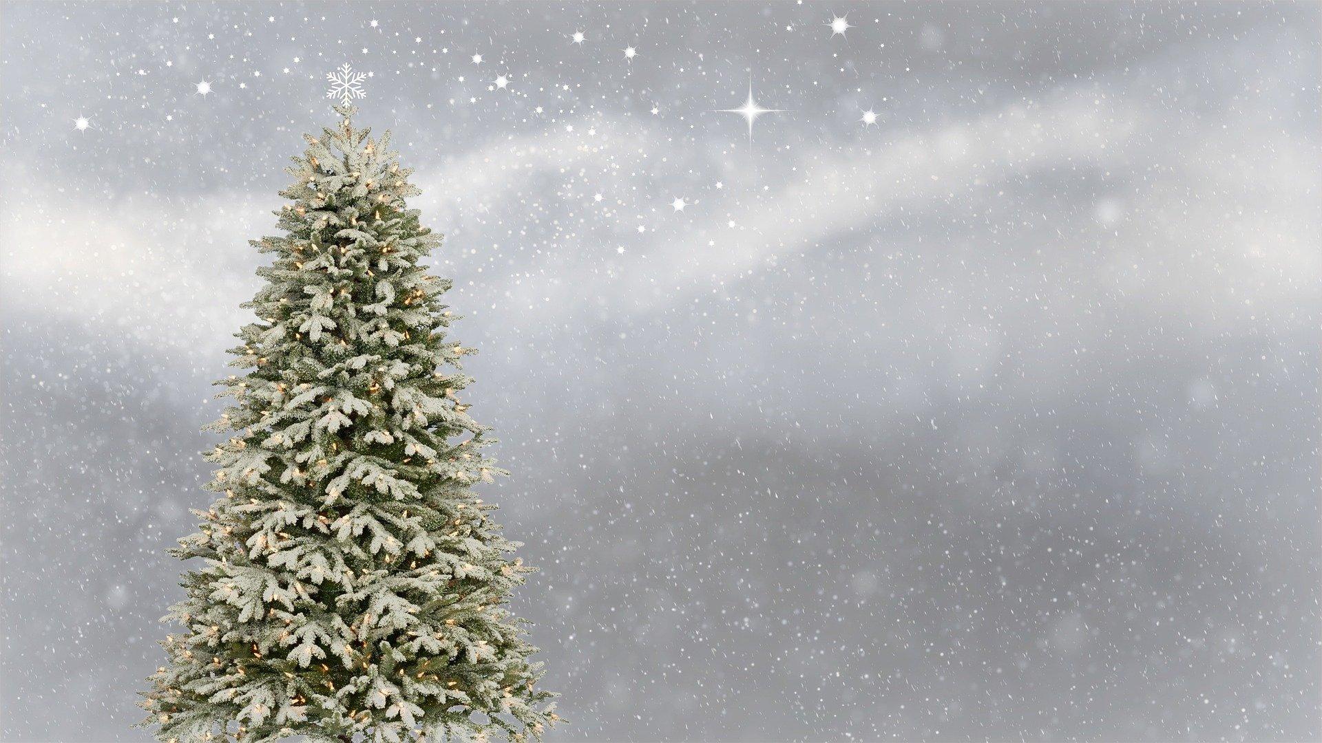 Albero Di Natale Origini.Albero Di Natale Origini