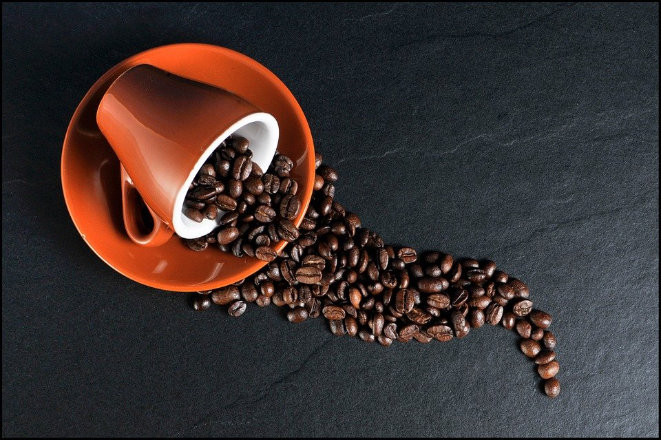 caffe-dna