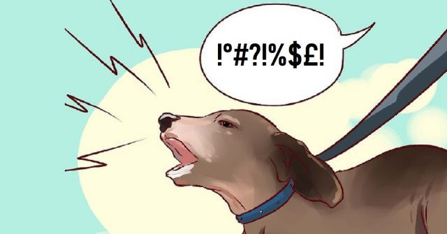 cane-che-abbaia-cosa-significa