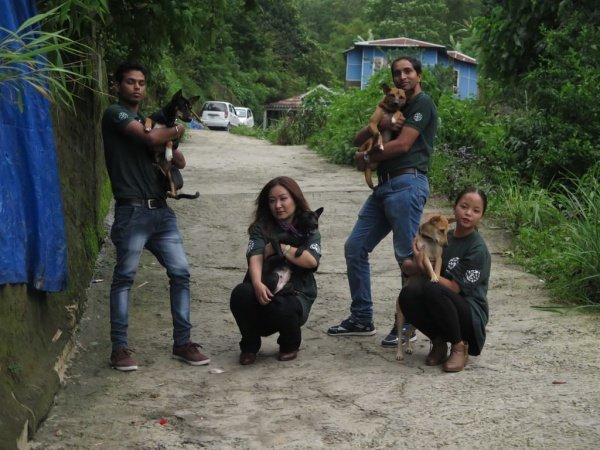 il-salvataggio-dei-36-cani 3