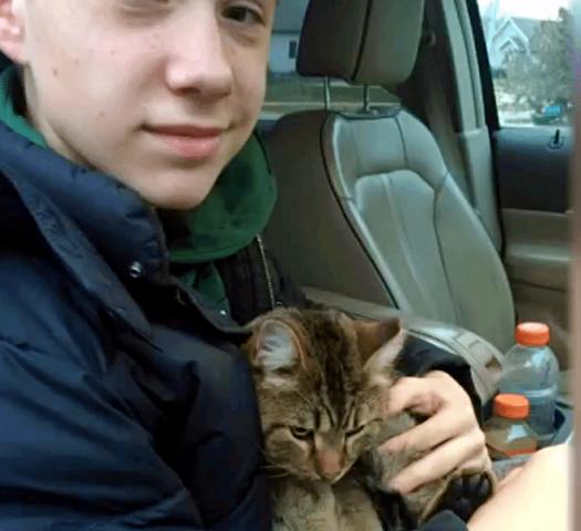 Gavin-salva-la-vita-del-gattino-abbandonato 1