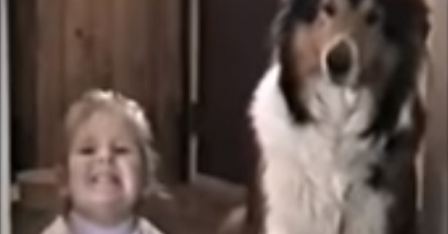 mamma-dice-loro-di-sorridere-e-dire-cheese-il-cane-regala-unespressione-unica