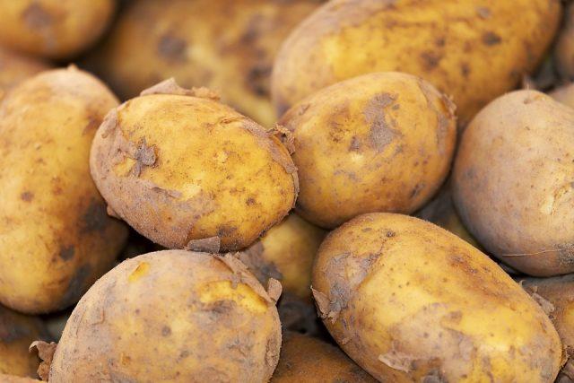 patate-solanina