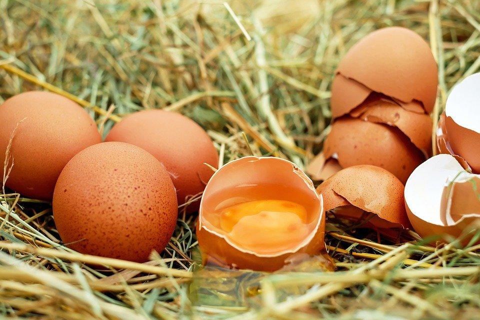 uova-importanza