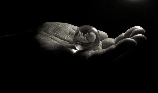 la-moda-dello-scambio-di-embrioni 1
