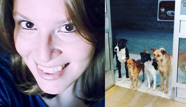 senzatetto-cani-brasile
