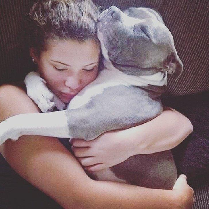 Ami il tuo cane come tuo figlio