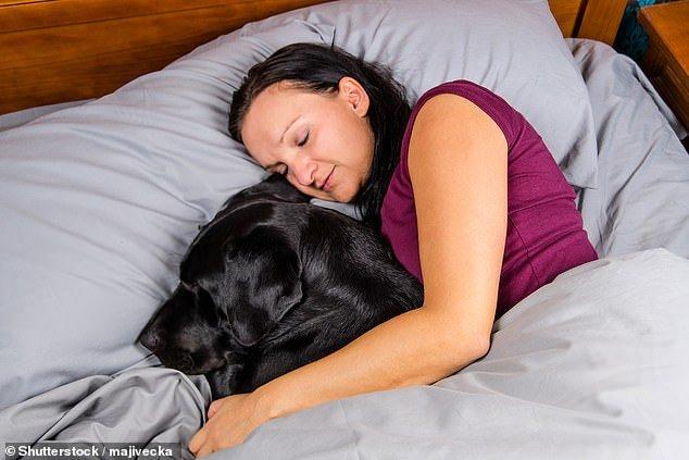 Dormire con il cane nel letto ci rende più sicuri