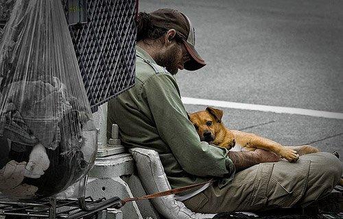 il-legame-tra-i-cani-ed-il-senzatetto 3