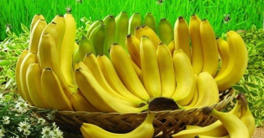 Ecco come evitare che le banane diventino nere