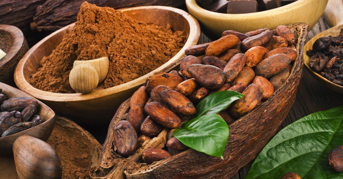 Il cacao riduce la diarrea e fa diventare più intelligenti