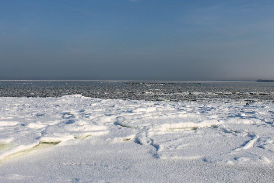 spiaggia con neve<