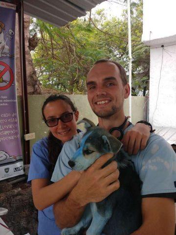 Taylor-il-cucciolo-ricoperto-di-vernice-blu 2