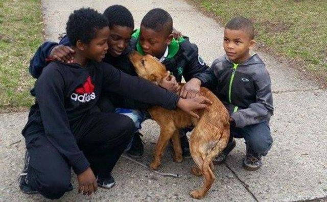 4-ragazzini-salvano-la-vita-di-un-cane