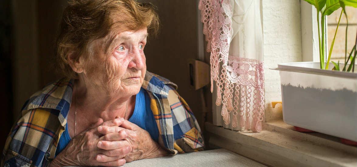 Tragedia della solitudine, anziana trovata morta mangiata dal suo gatto