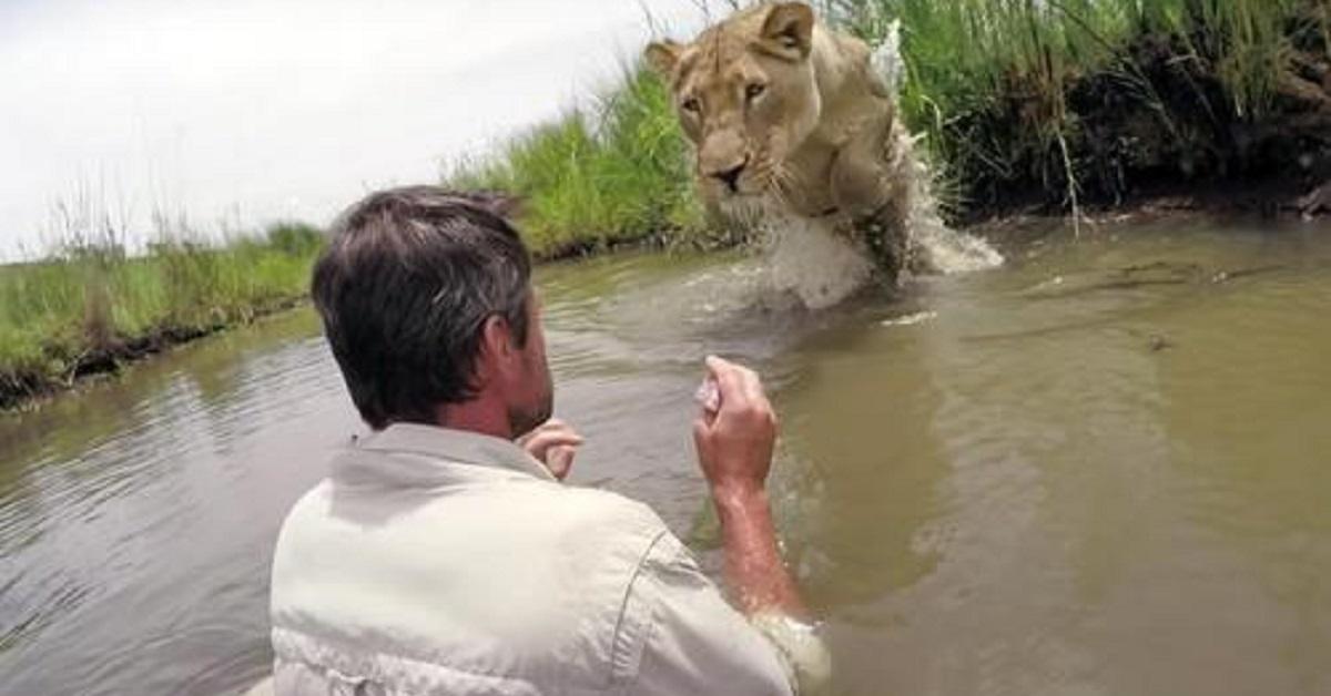 uomo-che-ha-salvato-due-cuccioli-di-leone-7-anni-fa-torna-a-trovarli