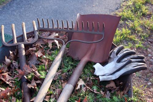 Pulire gli attrezzi da giardino