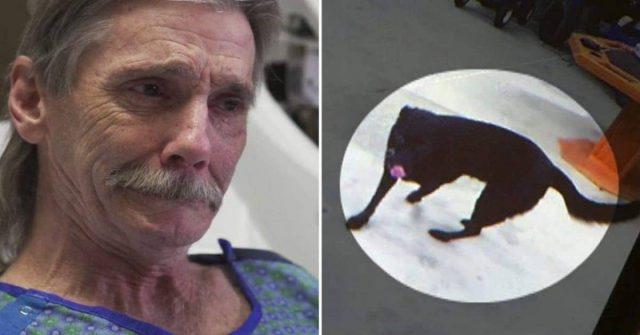 Jay-rischia-di-perdere-la-vita-per-salvare-il-suo-cane