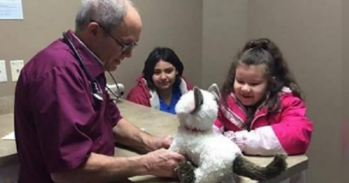 Il-veterinario-cura-il-gattino-di-Peluche-di-Jazmine