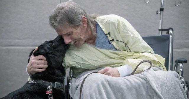 la-storia-di-Jay-e-del-suo-amato-cane-Hero 1