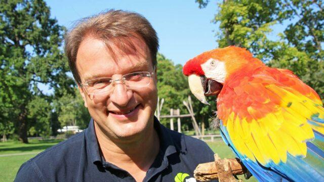 pappagallo-pippi