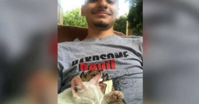 la-storia-dell'incontro-tra-Ali-ed-il-gattino