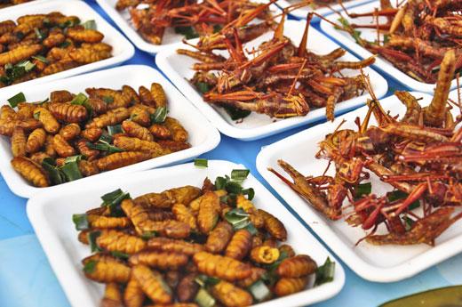 Gli-insetti-sono-un-piatto-classico-di-molte-popolazioni-orientali