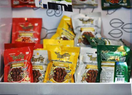 Gli-snack-a-base-di-insetti