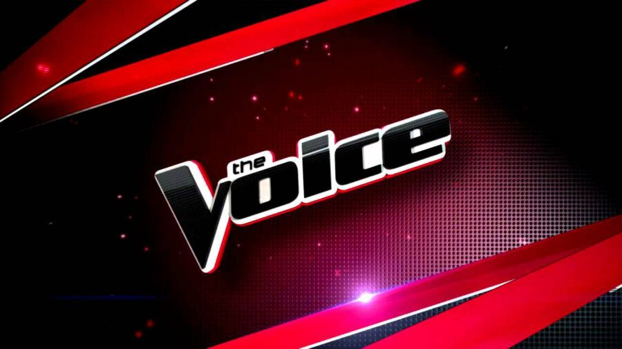 The Voice 2019 giudici