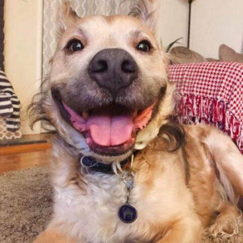il-meraviglioso-sorriso-di-Milo 2