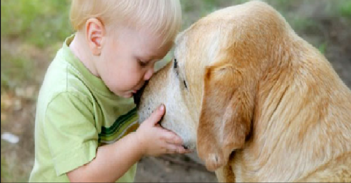 Il cane Charlie diventa cieco