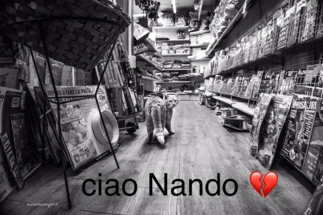 ciao-nando